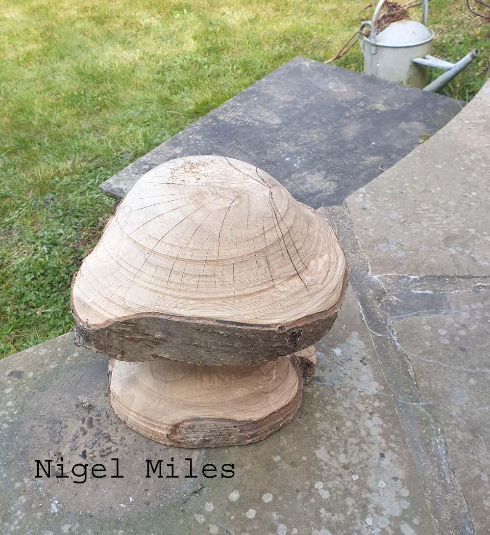 Nigel1