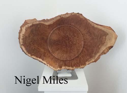Nigel12b
